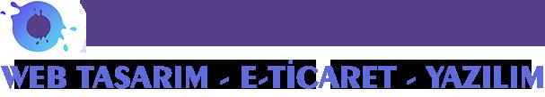 Profesyonel Kurumsal & E-ticaret Web Site Hizmetleri